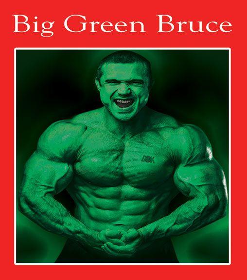 Big Green Bruce